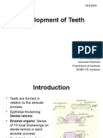 Development of Teeth