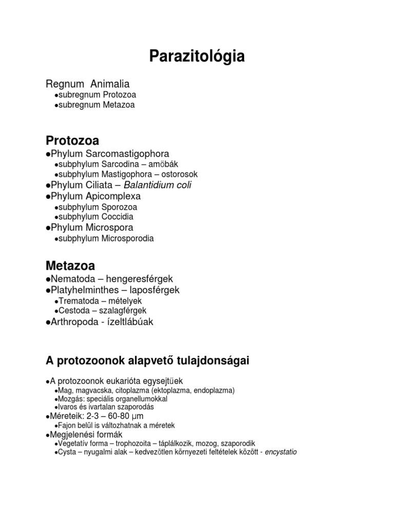 Ascaris ivartalan szaporodás)