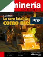 MCH-392(revista).pdf
