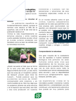 Article Revista Ext