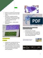 HEMOSTASIS Coagulation Pathway
