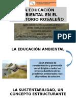 La Educación Ambiental en El Territorio Rosaleño Para Imprimir