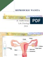 System Reproduksi Wanita