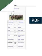 División Militar