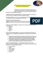 Resumen Vtb Aplicada Fisioterapia