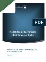 Sfv Ciclos Manual de Uso Servicio 2