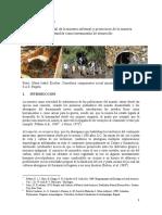 Impacto Ambiental en La Mineria Informal