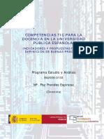 Informe Final Competencias2010
