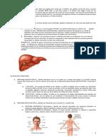 curso de anatomia y fisiologia mejorado.doc