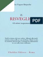 tulku_urgyen_-_il_risveglio.pdf