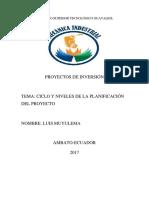 Ciclo y Niveles de Planificacion de Proyectos