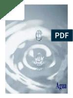 20899690-Agua.pdf