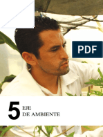 5 Eje de Ambiente