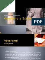 voyerismoyexhibicionismo-101017231207-phpapp02