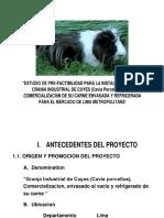 prefactibilidad de criaza de cuy y su impacto ambiental