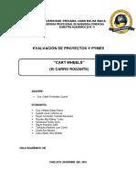 Informe de Carrito