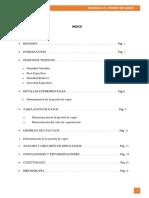 Informe N° 4 Presión de Vapor - UNMSM