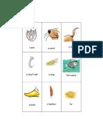 Animal-Body-Parts-1.doc