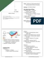 BIO130Chapter4Notes.pdf