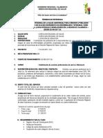 TDR MONITOREO DIRESA ENFERMERA.docx