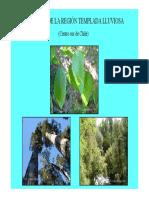 Bosques-templados.pdf