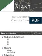BC Basics (Español)