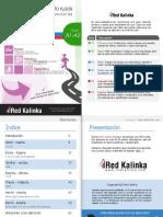 Verbos de movimiento NIVEL A1-A2 Red Kalinka.pdf