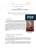 FISIOPATOLOGÍA DEL ANILLO WALDEYER.pdf