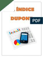 Indice Dupont. Terminado