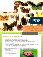 entomologia-140108210817-phpapp02