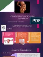 Expo Cambios Fisio en El Embarazo - Dr. Regalado