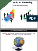3 .Os Ambientes de Marketing - Macroambiente e Microambiente