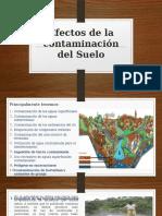 4. Efectos de La Contaminación Del Suelo