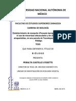 Tesis Peralta Castillo