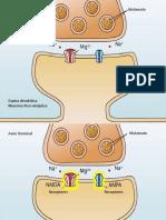 LPL quimica.pptx
