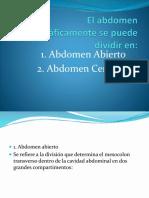 Anatomia y Suturas (1)