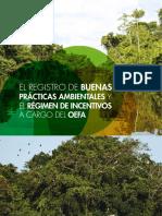 CARTILLA-BUENAS-PRACTICAS-AMBIENTALES-APLICACION-INCENTIVOS-julio-2016.pdf