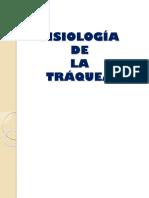 FISIOLOGÍA.pptx