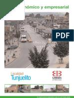 2240_perfil_economico_tunjuelito.pdf