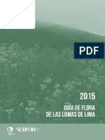 Guia de Flora Lomas de Lima -2015