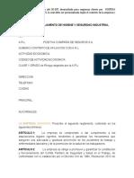 9.2. Formato Reglamento de Higiene y Seguridad Industrial