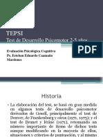 12_TEPSI.pdf