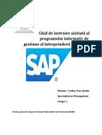 Ghid de Instruire Asistată Al Programului Informatic de Gestiune Al Întreprinderii SAP