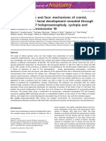 The human brain and face.pdf