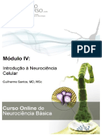 Modulo 1 - Fisiologia Neuronal