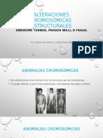 ALTERACIONES CROMOSÓMICAS ESTRUCTURALES