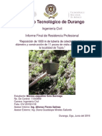 Informe Residencia Profesional Final Conduccion Agua
