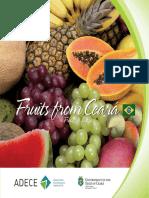Folder Fruta Sadece