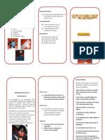 SAUL-CELIA TRIPTICO.pdf
