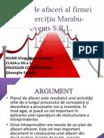 Planul de Afaceri - f.e. Marabu Events s.r.l